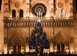 1.5-Hour Christmas Lights Night Bus Tour of Paris