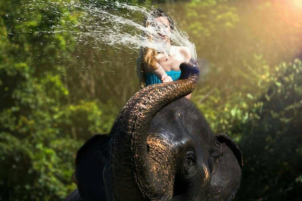 Khao Sok: Full-Day Bamboo Rafting and Elephant Bathing