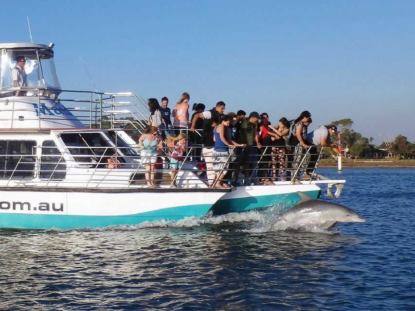 Mandurah 1-Hour Dolphin and Scenic Canal Cruise
