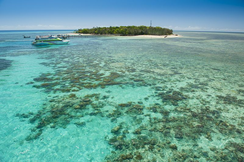 Green Island Reef Catamaran Cruise from Cairns