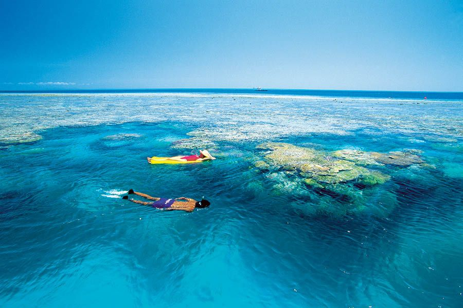 Quicksilver Outer Barrier Reef Full-Day Cruise