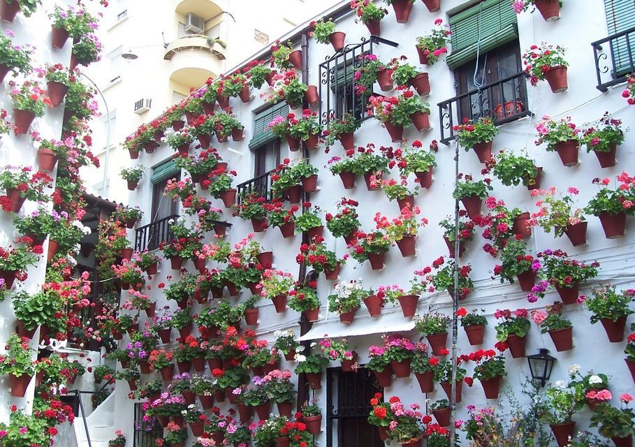 Patios of Cordoba Walking Tour
